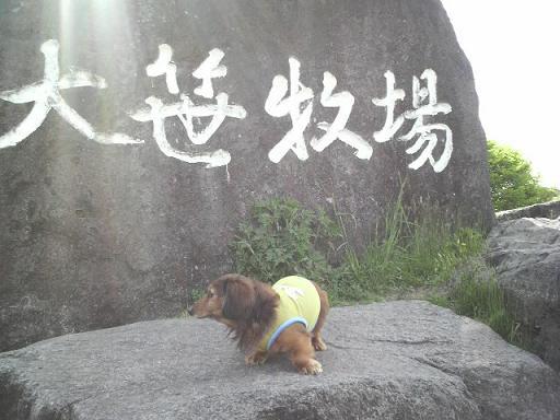 大笹牧場日光