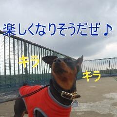 10_20110323184940.jpg