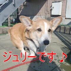 1_20110206155624.jpg