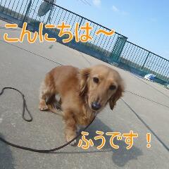 1_20110224185128.jpg