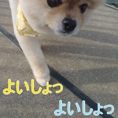 1_20110315145843.jpg