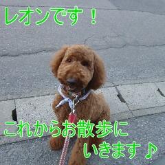 1_20110315150226.jpg