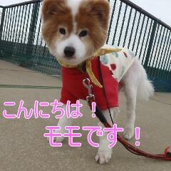 1_20110324151056.jpg