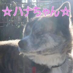 2_20110201164814.jpg