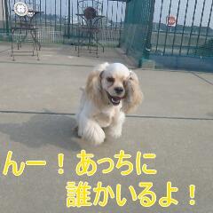 2_20110206155448.jpg