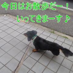 2_20110210163400.jpg