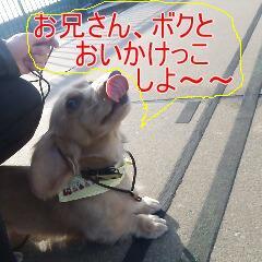 2_20110218162919.jpg