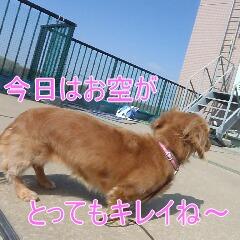 2_20110224185128.jpg