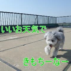 2_20110307150058.jpg