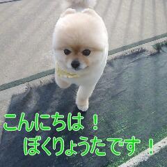 2_20110315145843.jpg