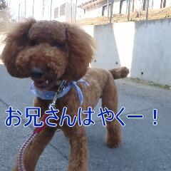 2_20110315150226.jpg