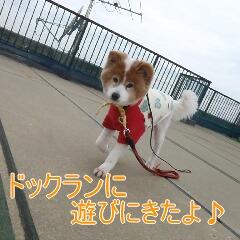 2_20110324151056.jpg