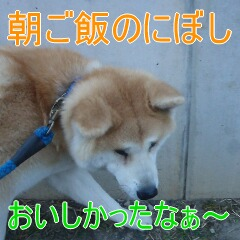 3_20110201164813.jpg