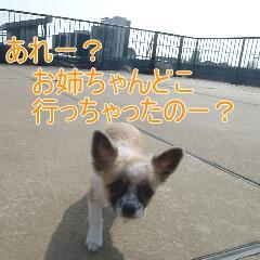 3_20110206155536.jpg