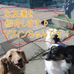 3_20110213170247.jpg