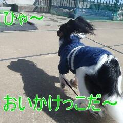 3_20110213170821.jpg