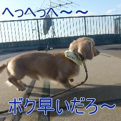 3_20110218162918.jpg