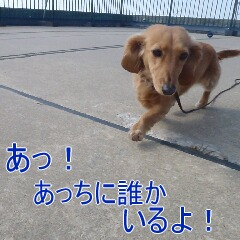 3_20110224185127.jpg