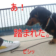 3_20110224185158.jpg