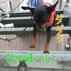 3_20110323184842.jpg