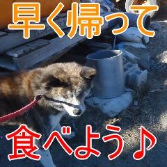 4_20110201164813.jpg