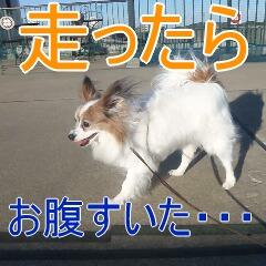 4_20110201164835.jpg