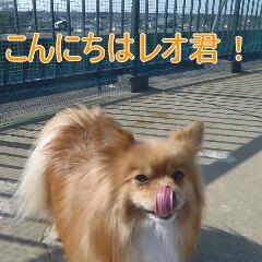4_20110201164850.jpg