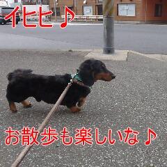 4_20110210163400.jpg