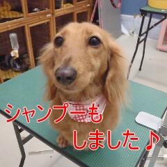 4_20110224185127.jpg