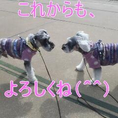 4_20110224185239.jpg