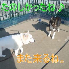 4_20110224185310.jpg