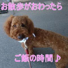 4_20110315150226.jpg