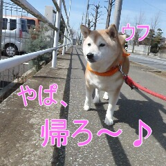 4_20110315150820.jpg