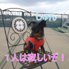 4_20110323184842.jpg