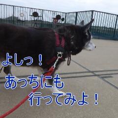 4_20110324151357.jpg