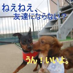 7_20110323184942.jpg