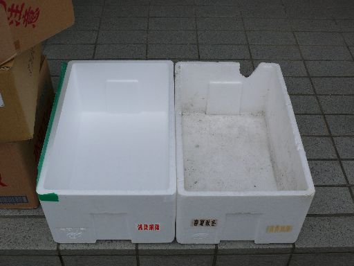 P1110538.jpg