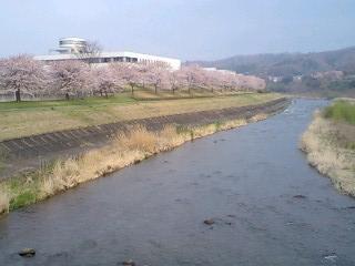 相川橋上流 201004 CAV0SQ22
