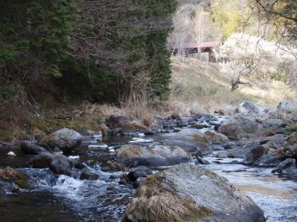 桐生川 20110407