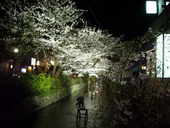 夜桜お七1 09.04.07
