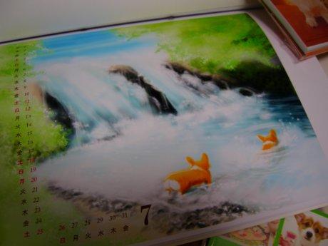 大山の川遊びを思い出します。