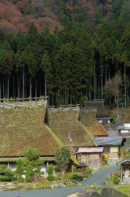 20081221_0011.jpg