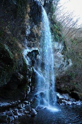 20090117_0005.jpg