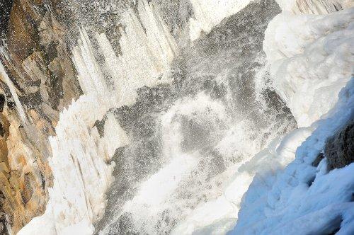 20090201_0005.jpg