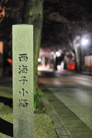 20090523_0001.jpg