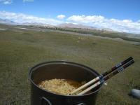 チベット高原で、遊牧の羊を見ながら紅焼牛肉面