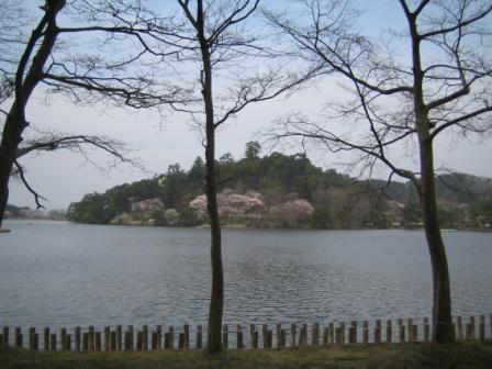 sakura_lake