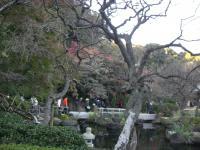 紅葉_鎌倉 002