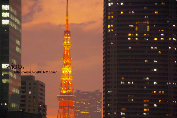 東京タワーキレイだった。