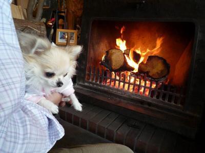 1.暖炉の前で